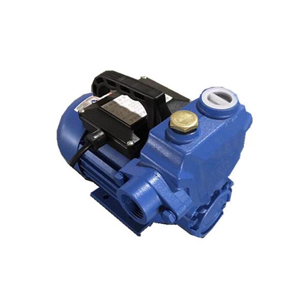 WZB旋涡式自吸泵